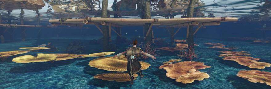 ArcheAge aquafarm