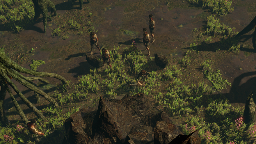 Path of Exile Forest