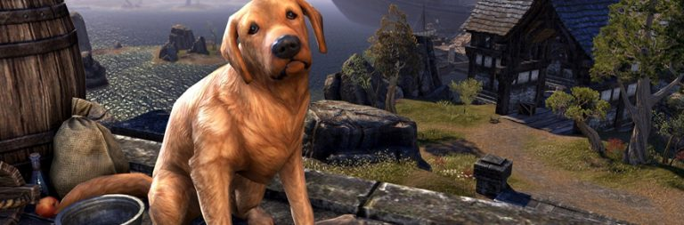 Here are some cute Elder Scrolls Online cash shop doggies
