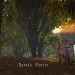 DrakesForest