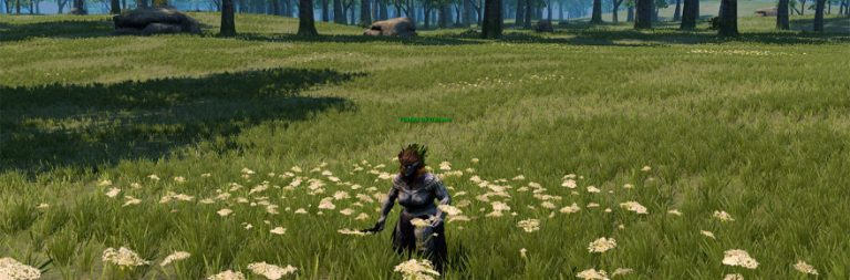 Camelot Unchained's weekend alpha sounds pretty successful