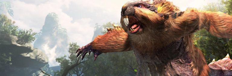 Monster Hunter Online's Chinese team does not oppose an English patch