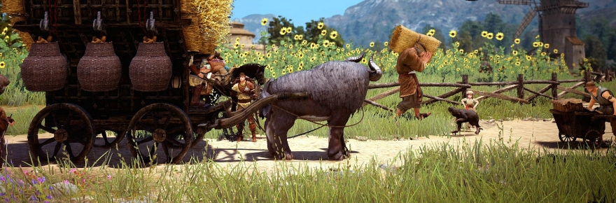 Black Desert players protest lag, bugs, pay-to-win, and lack
