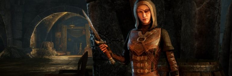 Elder Scrolls Online's 'personalities' are a roleplayer's dream