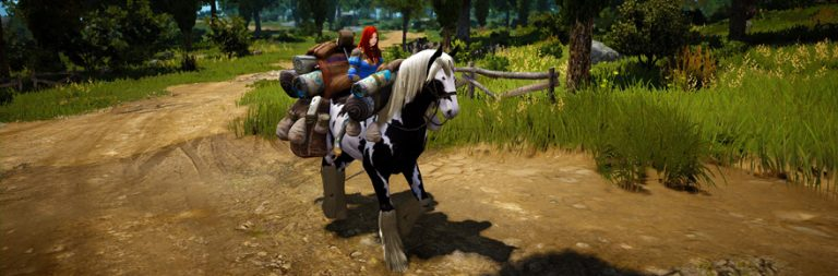 Black Desert compensation horses trot out May 6th
