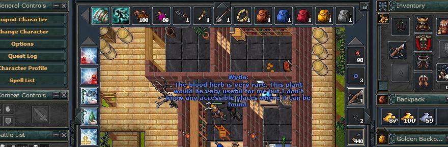 Door 999 tibia dev onica door lvl 999 banuta for Door 999 tibia