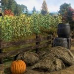 Autumn returns to Shroud of the Avatar, plus a look at a player-run town