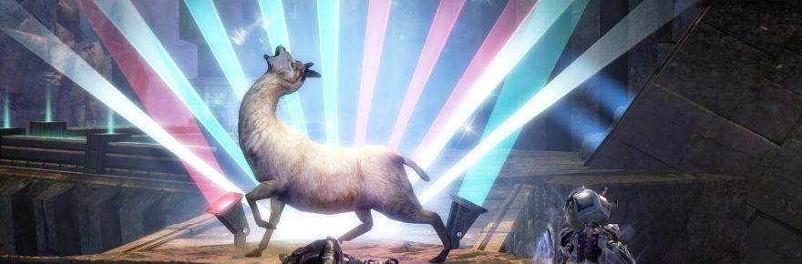 gw2-llama
