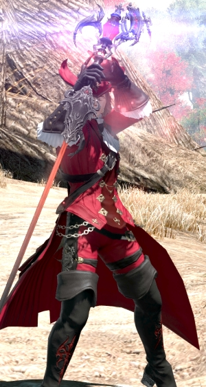 You may have noticed this is not FFXI based on the fact that Red Mage is... different.