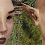 Mortal Online revamps all of its racial textures
