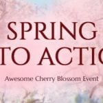 Black Desert's spring patch spawns cherry blossom events