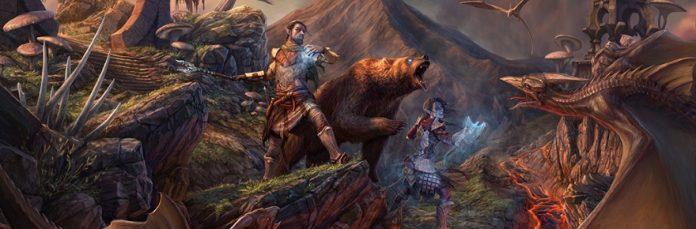 BEARS BEARS BEARS
