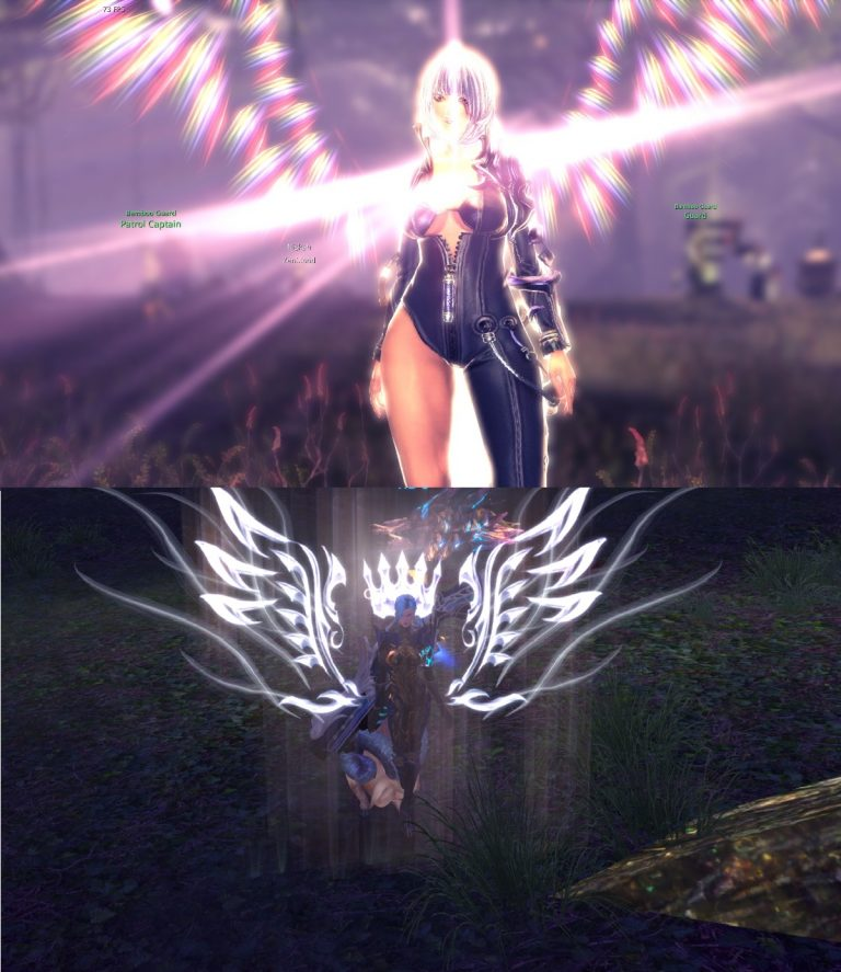 TERA B&S lvl up.jpg