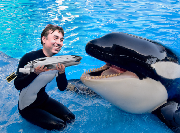 feeding time for shamu 400.png