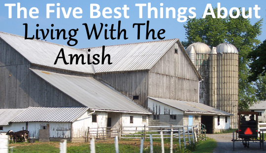 barn-yard-amish-pennsylvania.png