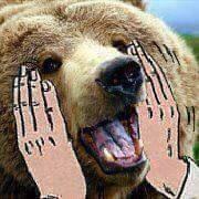 Bear Shock.jpg