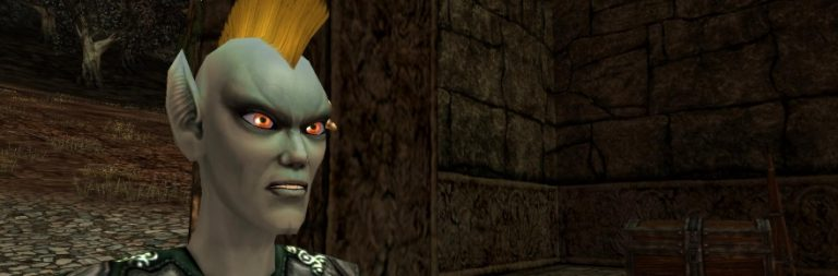Darkfall: Rise of Agon pushes for crowdsourcing and a freemium model