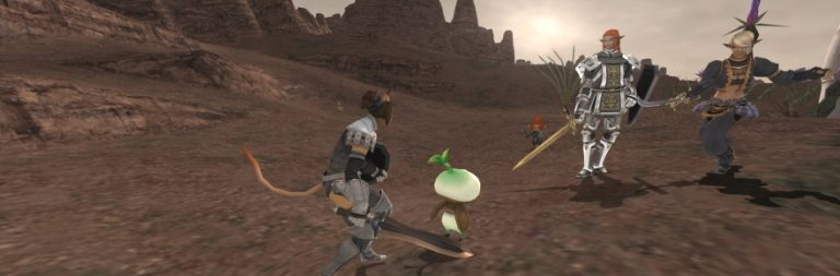 Vague Patch Notes: Player vs. class in Final Fantasy XI