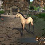 Sota_Stretchgoal_Dun_Foal_A