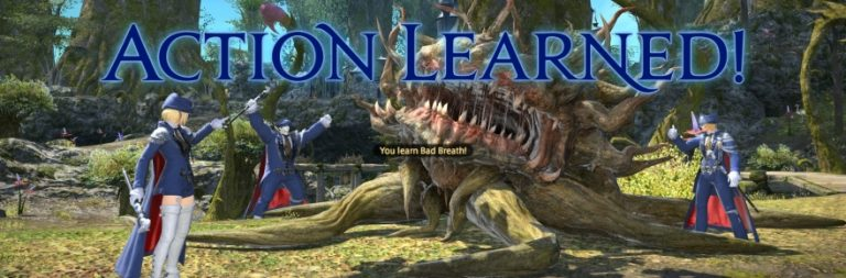Wisdom of Nym: Blue Mage in Final Fantasy XIV and what the update needs to deliver