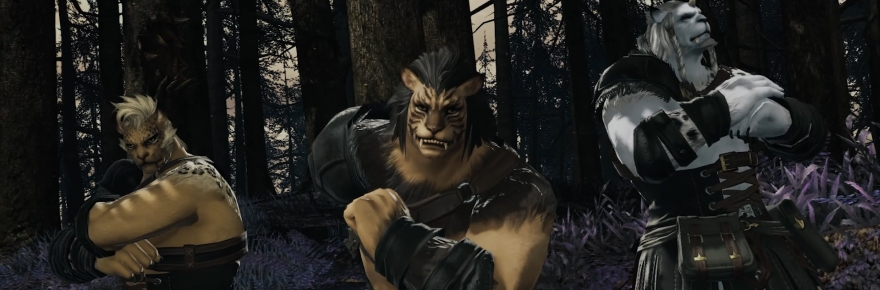 Wisdom of Nym: Why Final Fantasy XIV may have needed Hrothgar and
