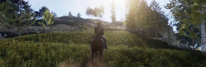 Horse outside.
