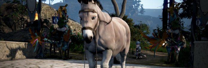 Donkeys cannot use horse gear.