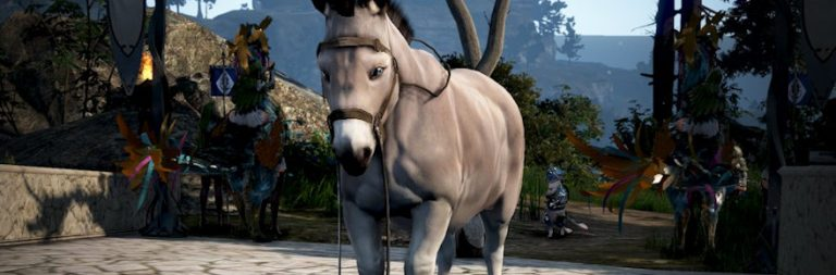 Black Desert's summer server season will end early to accommodate the PC Hashashin launch