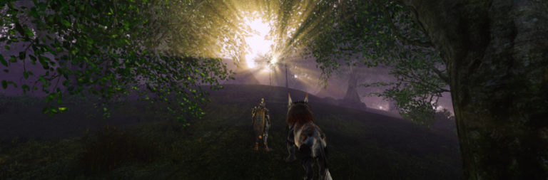 Fight or Kite: MMORPG PvP is about competition, not combat