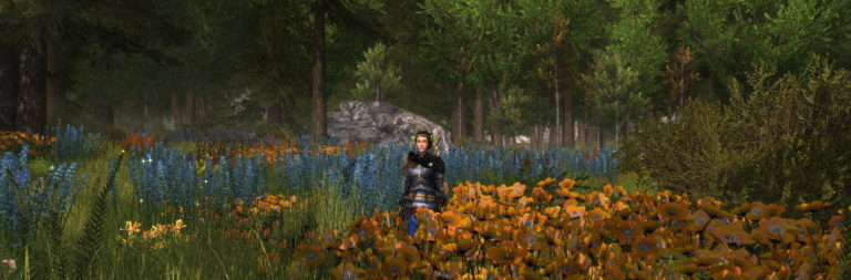 LOTRO and DDO re-enables character transfers, Wayfinder suffers three-week rollback [Updated]