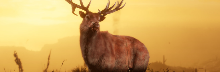 Red Dead Online's new Naturalist role has also re-introduced extremely hungry predators